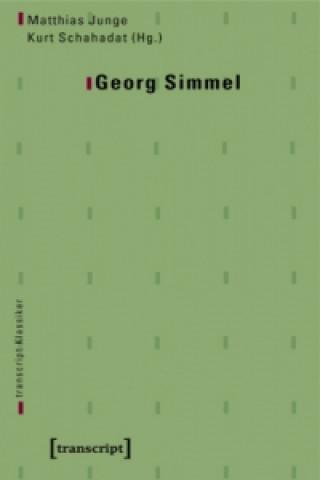 Georg Simmel kompakt