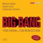 Big Bang, 3 Audio-CDs