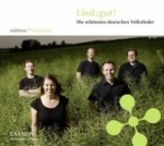 Lied: gut!, 1 Audio-CD