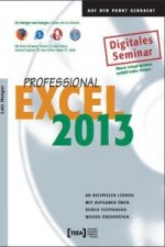 Excel 2013 Professional, CD-ROM