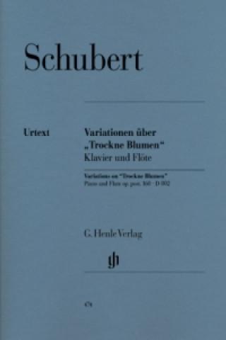 Variationen über Trockne Blumen e-Moll op. post. 160 D 802, Flöte und Klavier