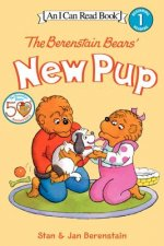 Berenstain Bears' New Pup