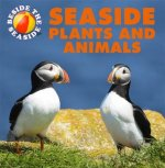 Seaside Plants and Animals