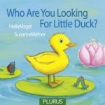 Who are You Looking for, Little Duck?