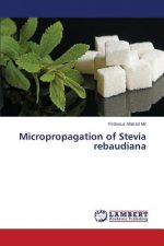 Micropropagation of Stevia rebaudiana