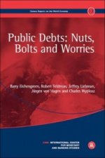 Public Debts: Nuts, Bolts, and Worries