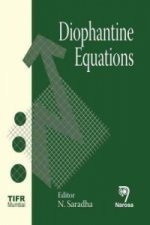 Diophantine Equations