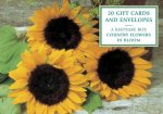 Tin Box of 20 Gift Cards and Envelopes: Country Flowers in Bloom