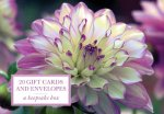 Tin Box of 20 Gift Cards and Envelopes: Dahlia