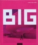 Big Bjarke Ingels Group