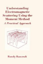 Understanding Electromagnetic Scattering Using the Moment Method
