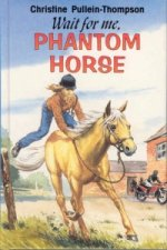 Wait for Me Phantom Horse