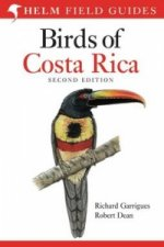 Field Guide to the Birds of Costa Rica