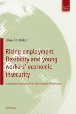 Rising Employment Flexibility and Young Workers' Economic Insecurity