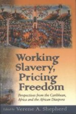 Working Slavery, Pricing Freedom