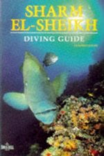 Diving Guide to Sharm-el-Sheik