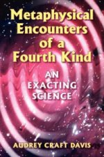 Metaphysical Encounters of a Fourth Kind