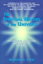 Spiritual Nature of the Universe