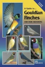 Guide to Gouldian Finches and Their Mutations