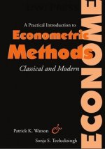 Practical Introduction to Econometric Methods