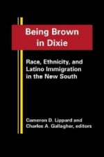 Being Brown in Dixie