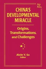 China's Developmental Miracle