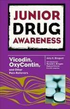 Vicodin, Oxycontin, and Other Pain Relievers