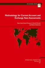 Methodology for Current Account and Exchange Rate Assessments