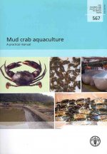 Mud Crab Aquaculture