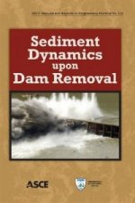 Sediment Dynamics Upon Dam Removal