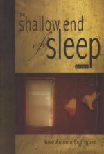 Shallow End of Sleep