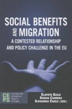 Social Benefits and Migration