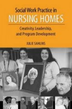 Social Work Practice in Nursing Homes