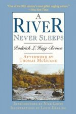 River Never Sleeps