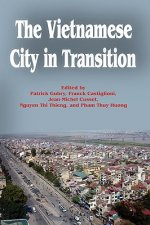 Vietnamese City in Transition