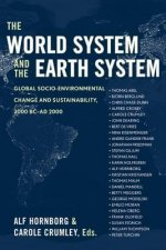 World System and the Earth System