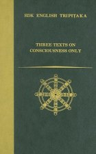 Three Texts on Consciousness Only