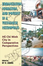 Urbanization, Migration and Poverty in a Vietnamese Metropolis