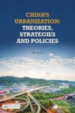 China's Urbanization: Theories, Strategies and Policies