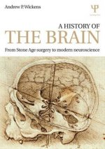 History of the Brain