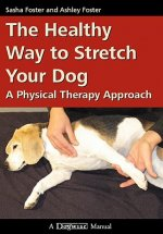 HEALTHY WAY TO STRETCH YOUR DOG