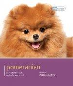 Pomeranian - Dog Expert