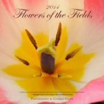 2014 Flowers of the Fields Calendar