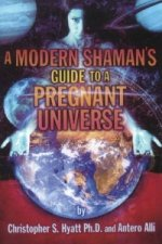 Modern Shaman's Guide to a Pregnant Universe