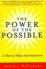 Power of the Possible
