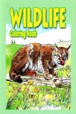 Wildlife Coloring Book