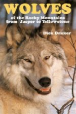Wolves of the Rocky Mountains from Jasper to Yellowstone
