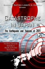 Catastrophe in Japan