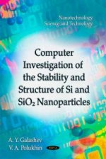 Computer Investigation of the Stability & Structure of Si & SiO2 Nanoparticles