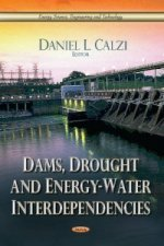 Dams, Drought & Energy-Water Interdependencies
